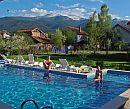 People swiming in pool
