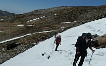 group walking through snow patches in the sierra nevada