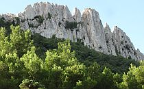 White rocks sticking high from a green forest
