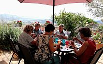Group of people having a meal on a terrace table