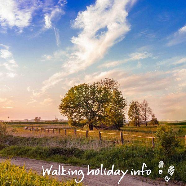 rural landscape with the WalkingHolidayInfo logo