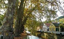 houses along a stream in autumn in samobor croatia