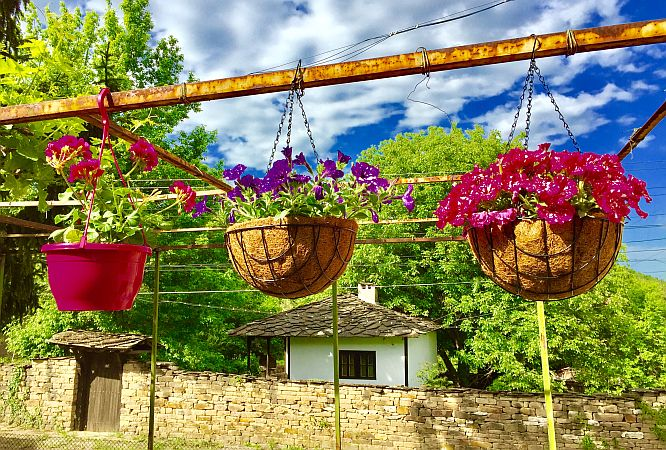 Flower hanging in natural pots in front of an authentic house