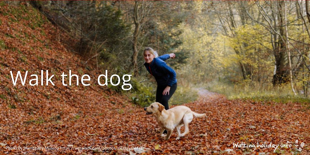Walk the dog … and get fit for your next walking holiday